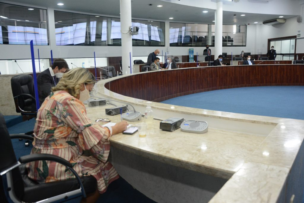 Sessão plenária Data: 10.06.2021 Foto: Érika Fonseca